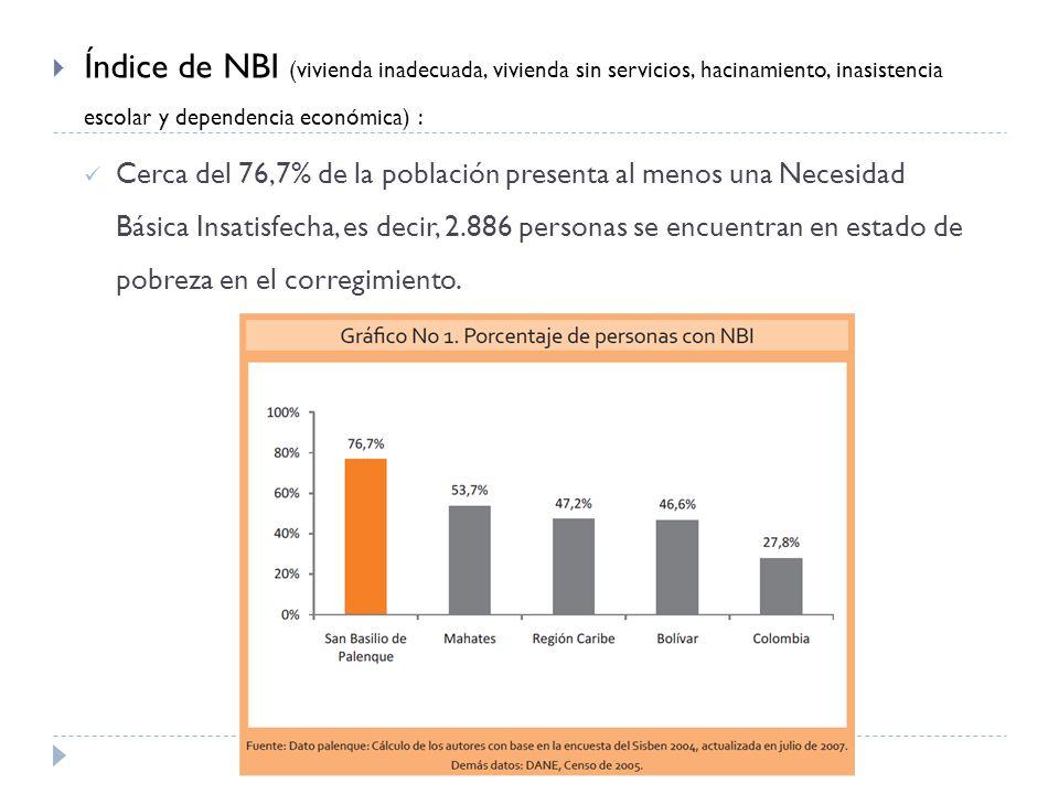 Índice de NBI (vivienda inadecuada, vivienda sin servicios, hacinamiento, inasistencia escolar y dependencia económica) :