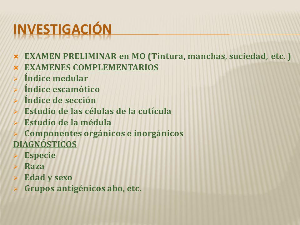 investigación EXAMEN PRELIMINAR en MO (Tintura, manchas, suciedad, etc. ) EXAMENES COMPLEMENTARIOS.