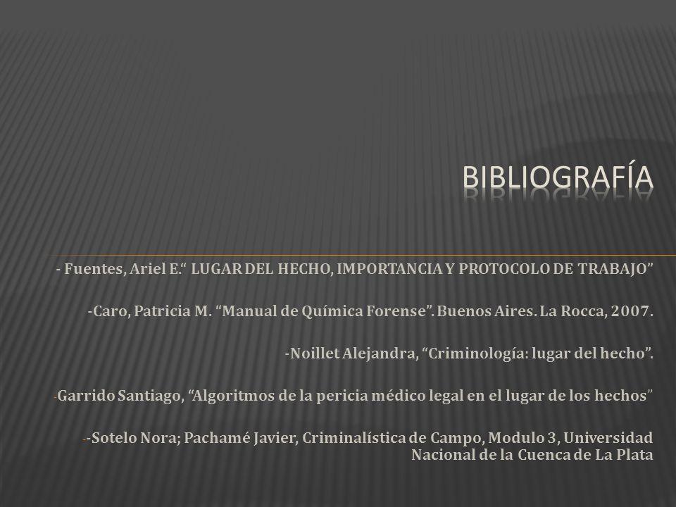 bibliografía - Fuentes, Ariel E. LUGAR DEL HECHO, IMPORTANCIA Y PROTOCOLO DE TRABAJO