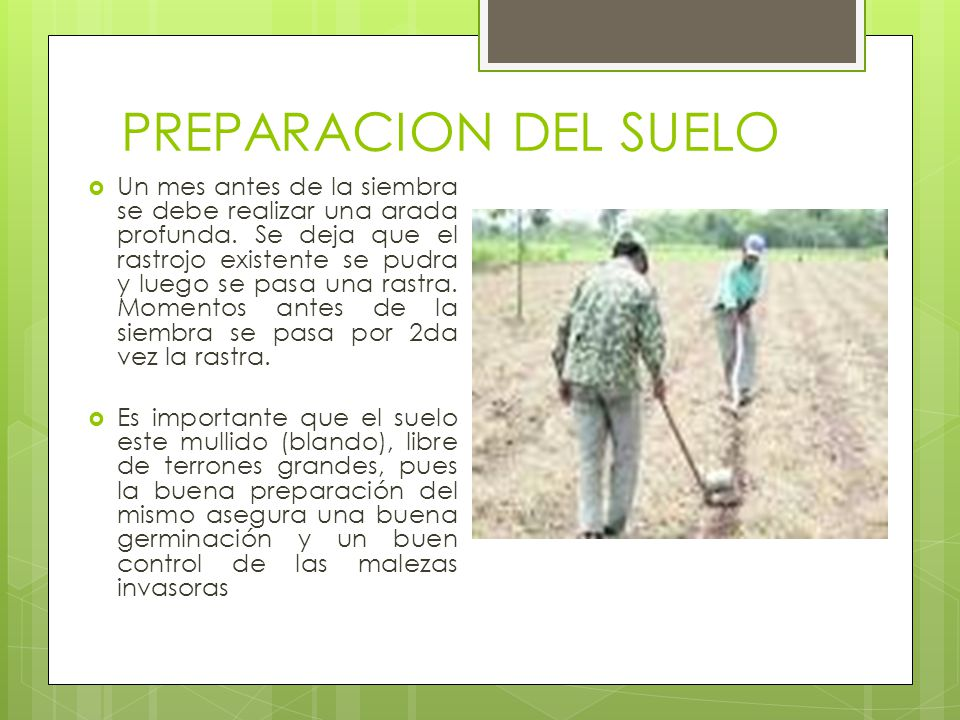 PREPARACION DEL SUELO