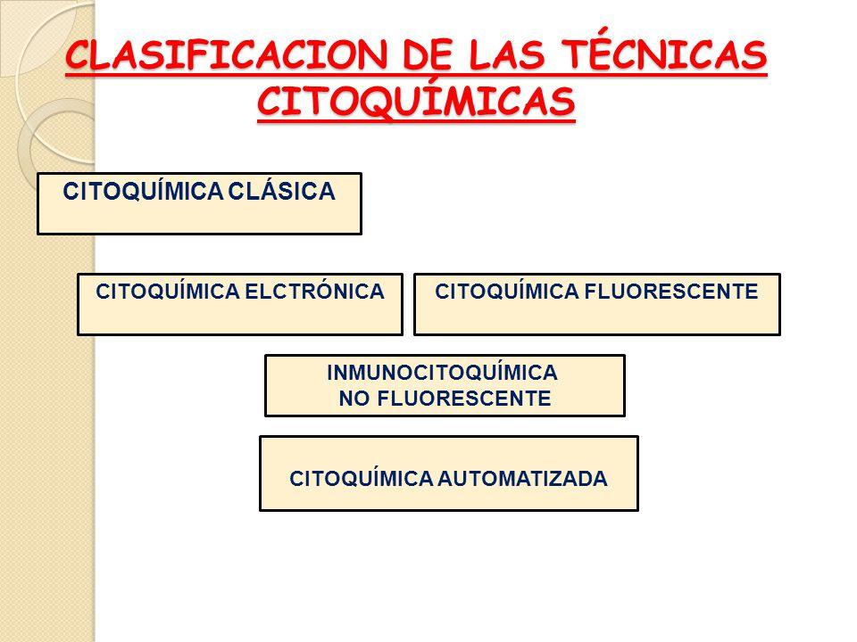 CLASIFICACION DE LAS TÉCNICAS CITOQUÍMICAS