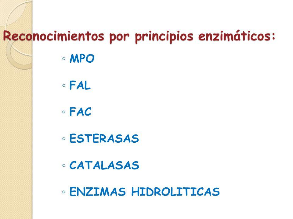 Reconocimientos por principios enzimáticos: