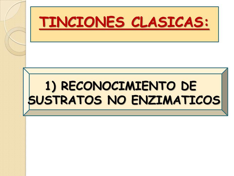 1) RECONOCIMIENTO DE SUSTRATOS NO ENZIMATICOS