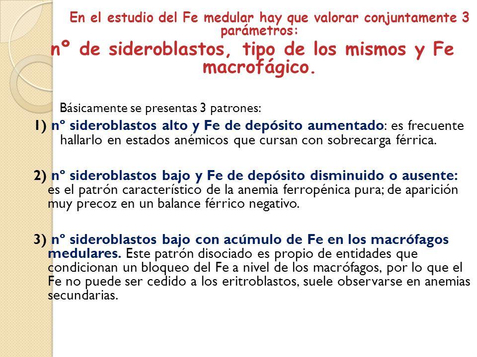 nº de sideroblastos, tipo de los mismos y Fe macrofágico.