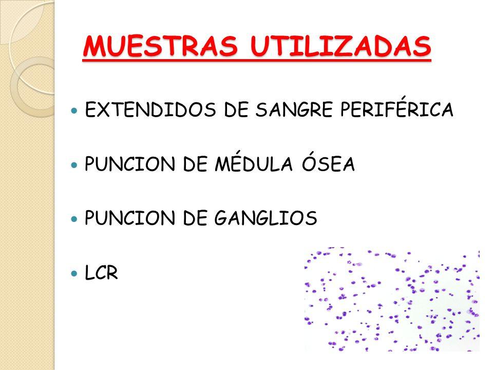 MUESTRAS UTILIZADAS EXTENDIDOS DE SANGRE PERIFÉRICA