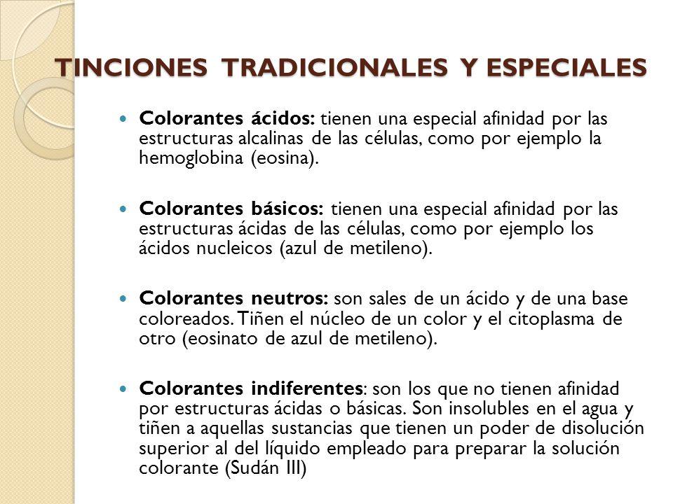 TINCIONES TRADICIONALES Y ESPECIALES