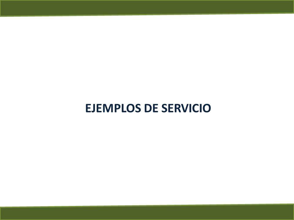 EJEMPLOS DE SERVICIO