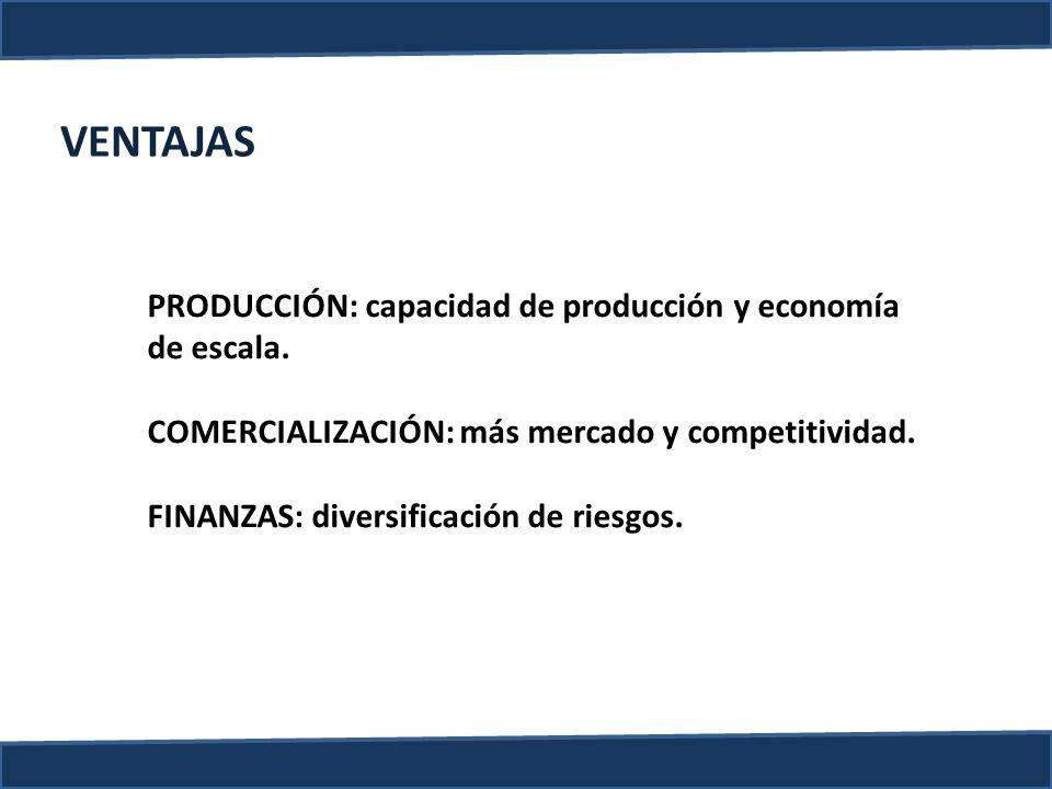 VENTAJAS PRODUCCIÓN: capacidad de producción y economía de escala.