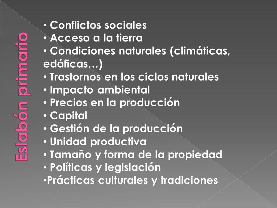 Eslabón primario Conflictos sociales Acceso a la tierra