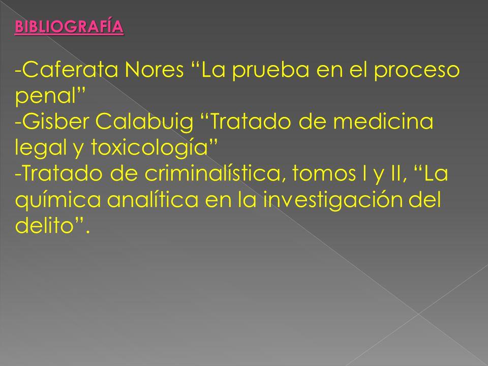 Caferata Nores La prueba en el proceso penal