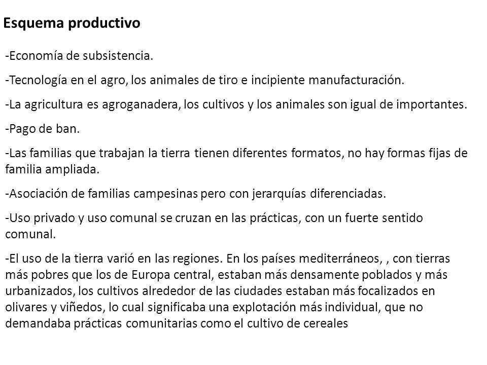 Esquema productivo Economía de subsistencia.