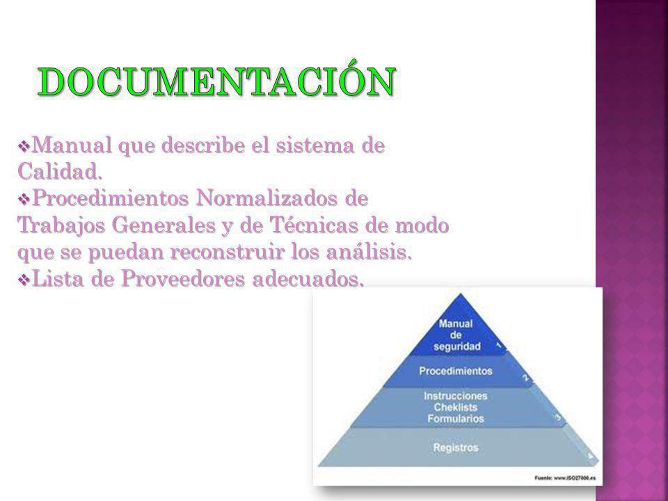 Documentación Manual que describe el sistema de Calidad.