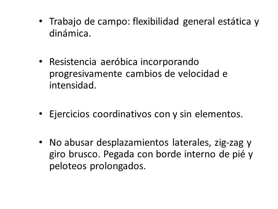 Trabajo de campo: flexibilidad general estática y dinámica.