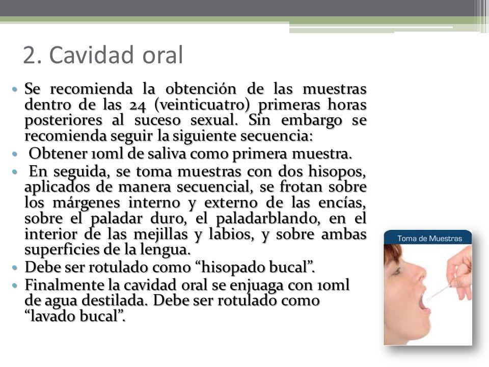 2. Cavidad oral