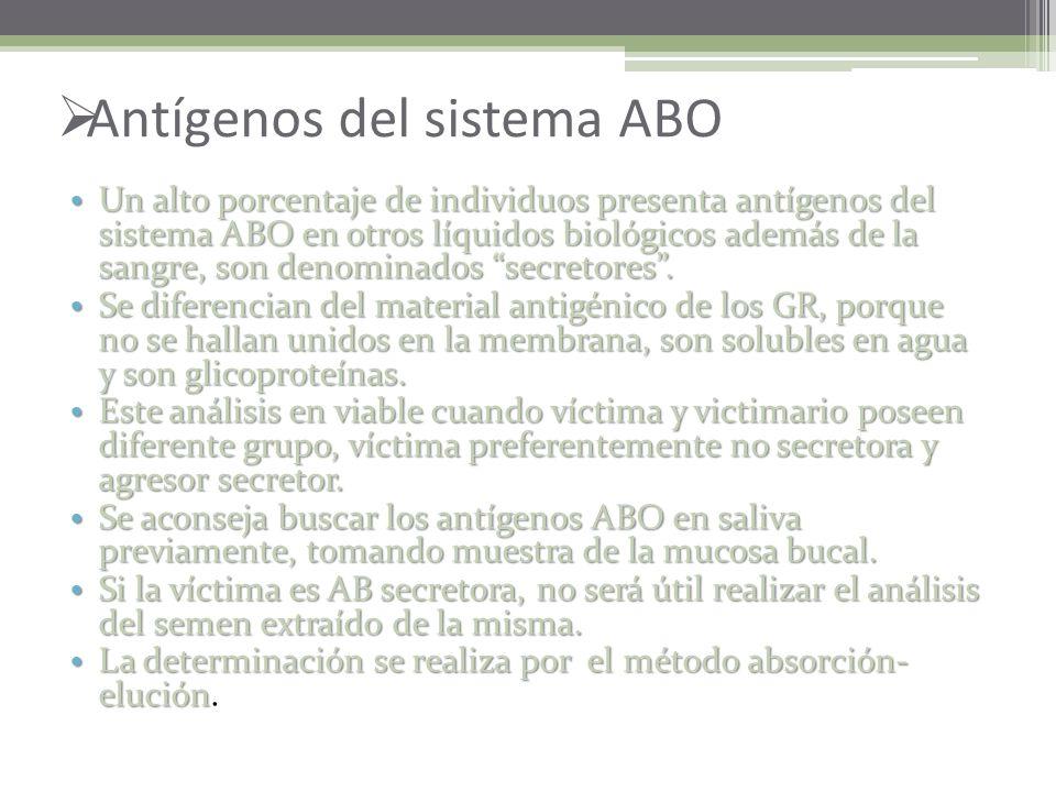 Antígenos del sistema ABO