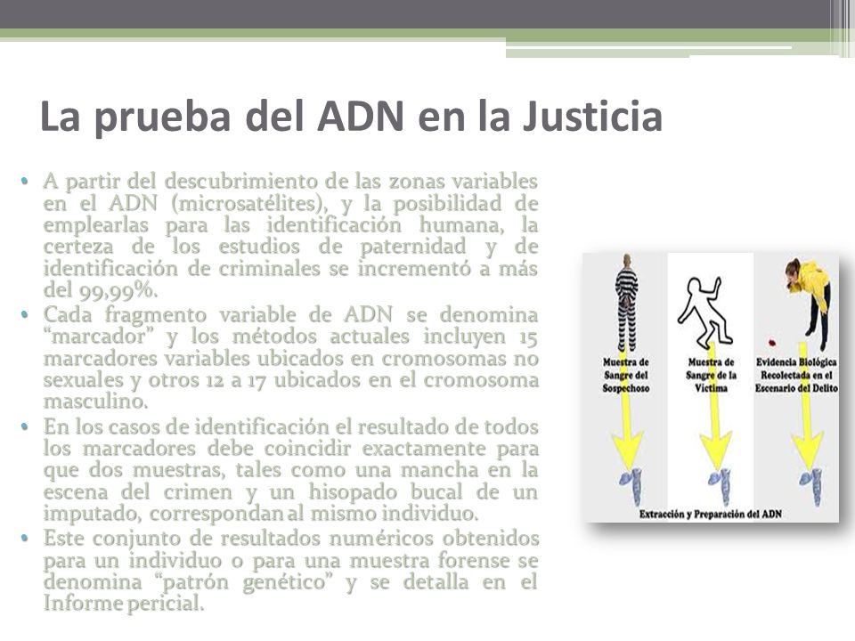 La prueba del ADN en la Justicia