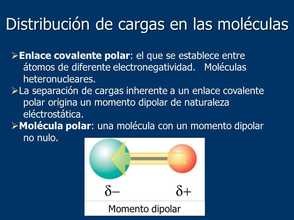 Distribución de cargas en las moléculas