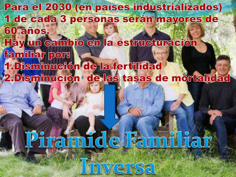 Piramide Familiar Inversa