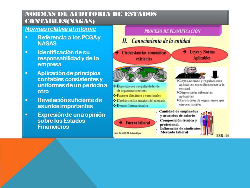 NORMAS DE AUDITORIA DE ESTADOS CONTABLES(NAGAS)