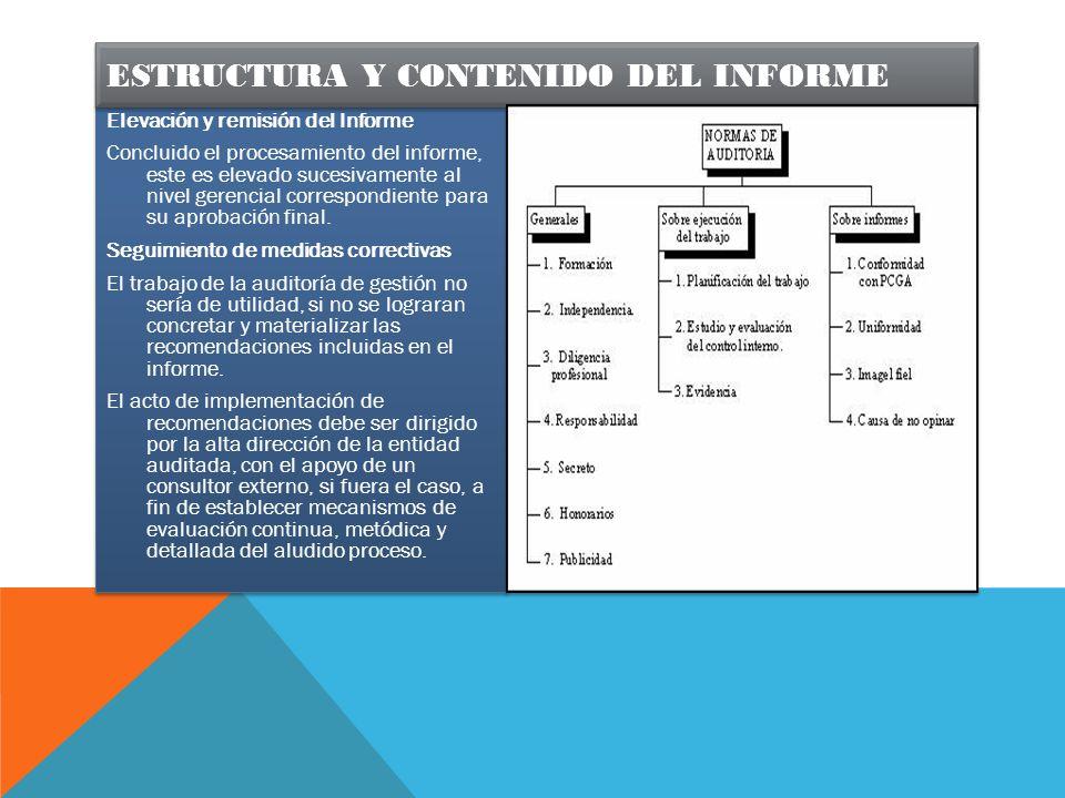 Estructura y contenido del informe