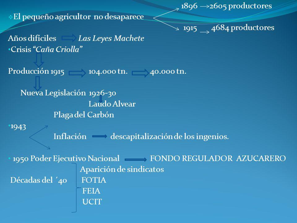1896 2605 productores El pequeño agricultor no desaparece. 1915 4684 productores. Años difíciles Las Leyes Machete.