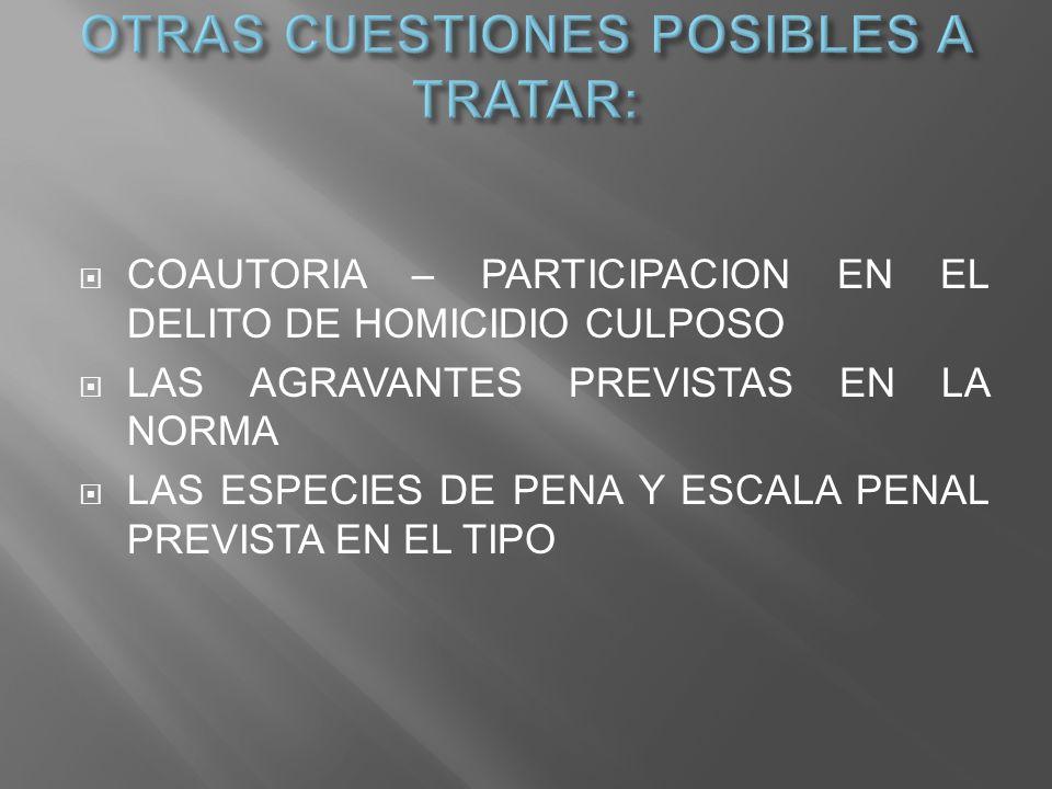 OTRAS CUESTIONES POSIBLES A TRATAR: