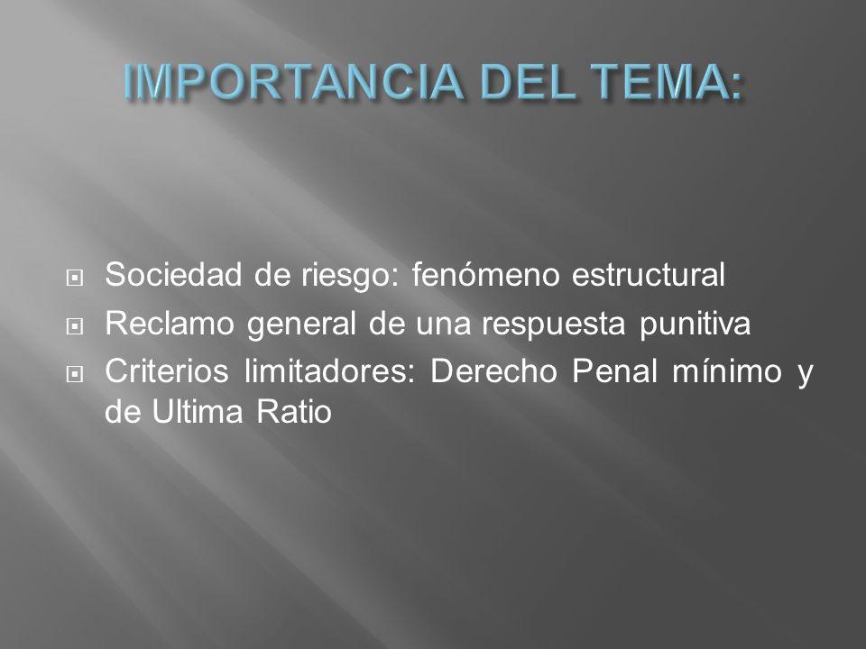 IMPORTANCIA DEL TEMA: Sociedad de riesgo: fenómeno estructural