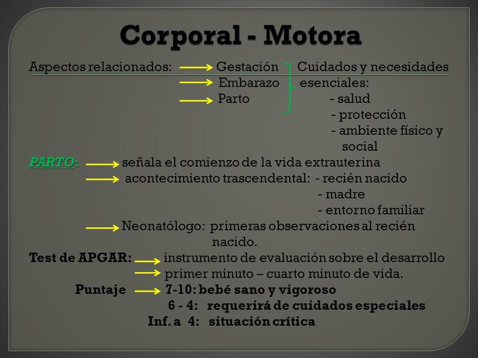 Corporal - Motora