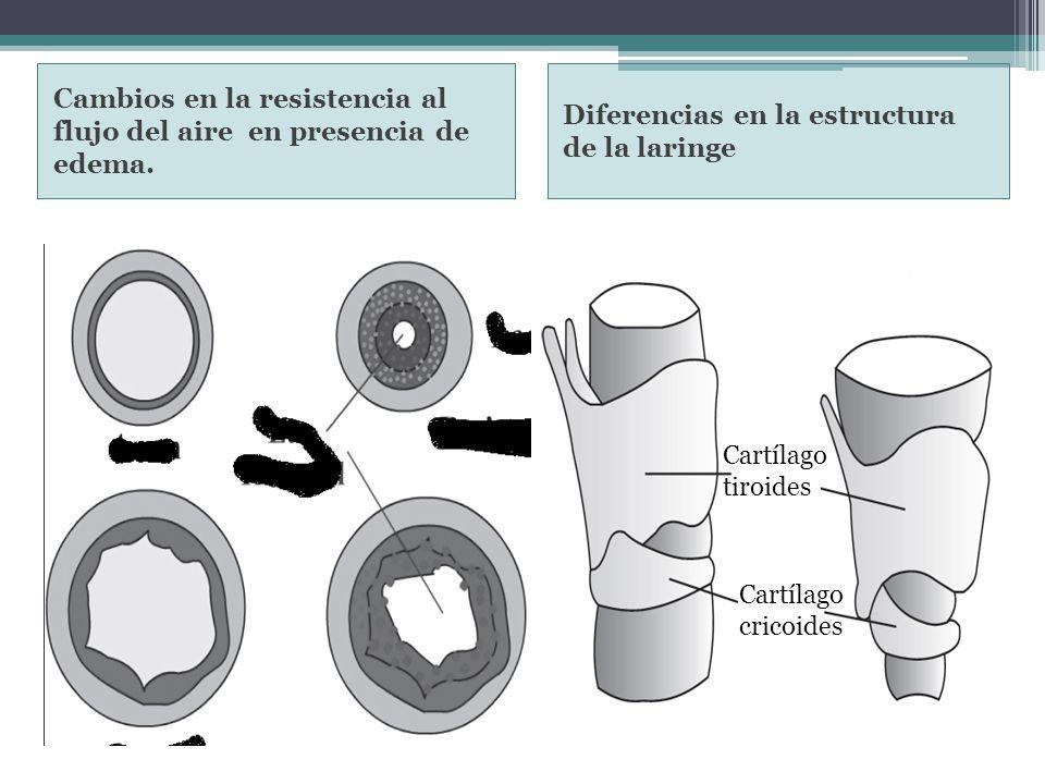 Cambios en la resistencia al flujo del aire en presencia de edema.