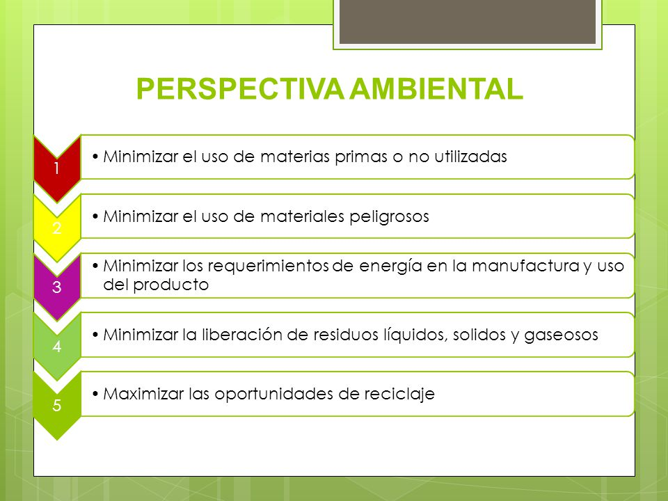 PERSPECTIVA AMBIENTAL
