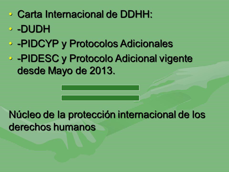 Carta Internacional de DDHH: