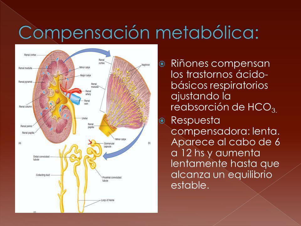 Compensación metabólica: