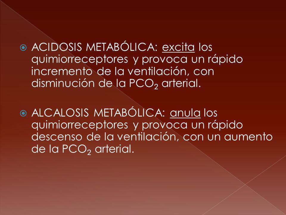 ACIDOSIS METABÓLICA: excita los quimiorreceptores y provoca un rápido incremento de la ventilación, con disminución de la PCO2 arterial.