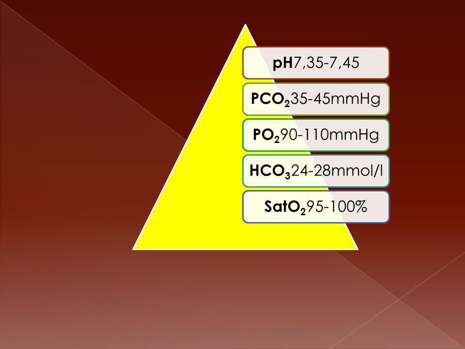 pH7,35-7,45 PCO235-45mmHg PO290-110mmHg HCO324-28mmol/l SatO295-100%