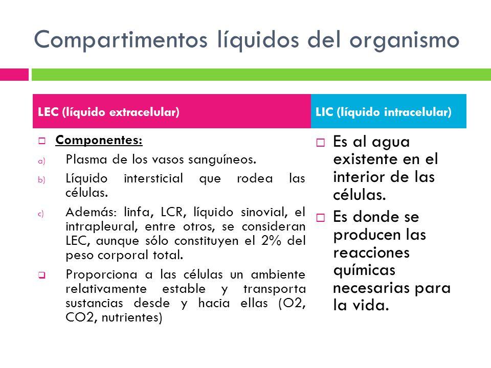 Compartimentos líquidos del organismo