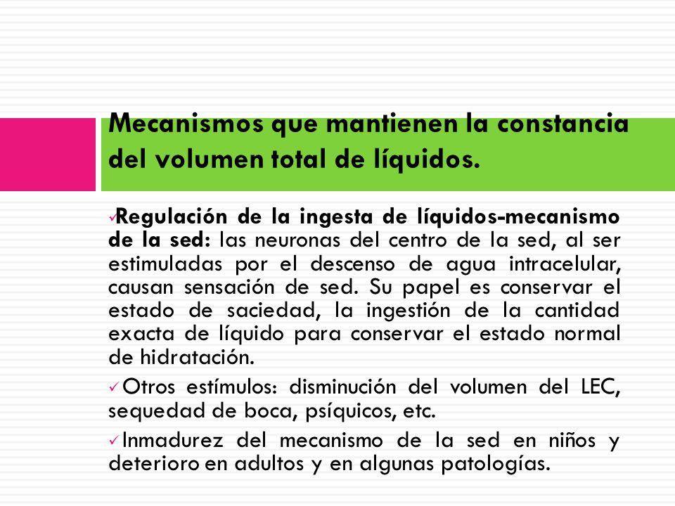 Mecanismos que mantienen la constancia del volumen total de líquidos.