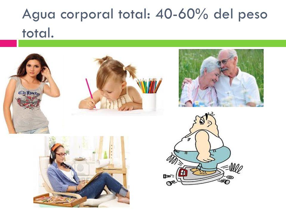 Agua corporal total: 40-60% del peso total.