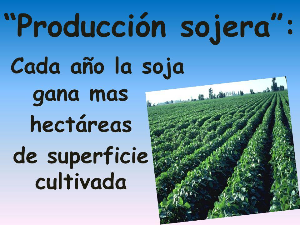 Cada año la soja gana mas hectáreas de superficie cultivada