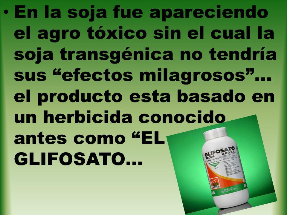 En la soja fue apareciendo el agro tóxico sin el cual la soja transgénica no tendría sus efectos milagrosos … el producto esta basado en un herbicida conocido antes como EL GLIFOSATO…