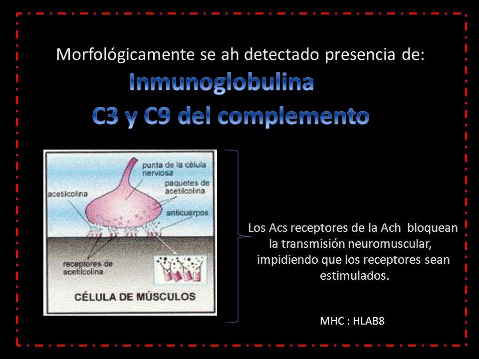 Inmunoglobulina C3 y C9 del complemento