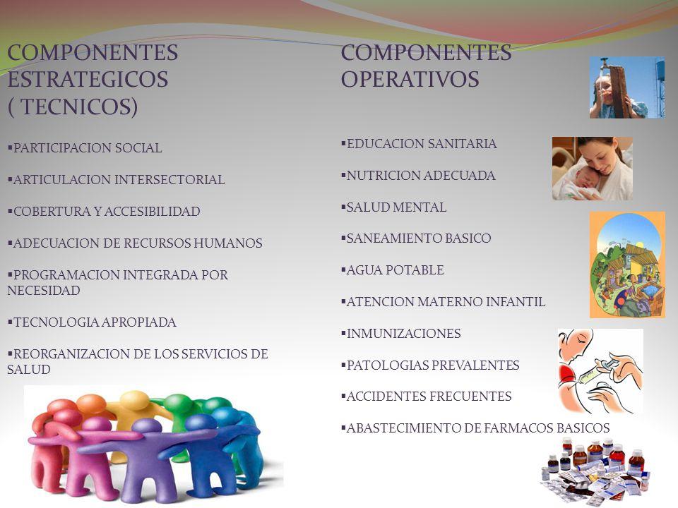 COMPONENTES ESTRATEGICOS ( TECNICOS) COMPONENTES OPERATIVOS