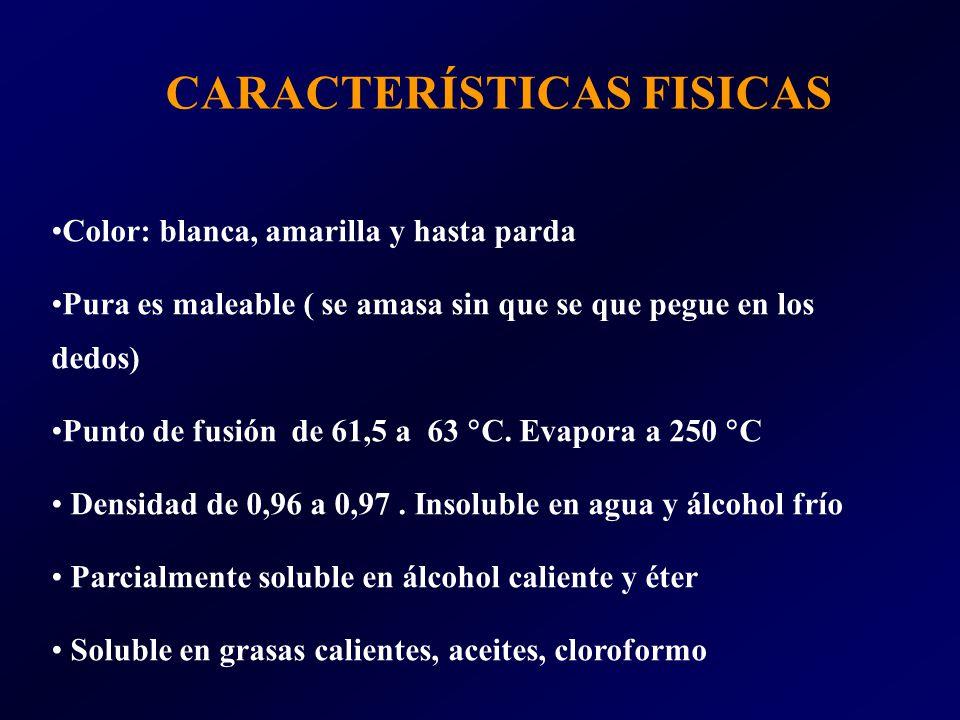 CARACTERÍSTICAS FISICAS