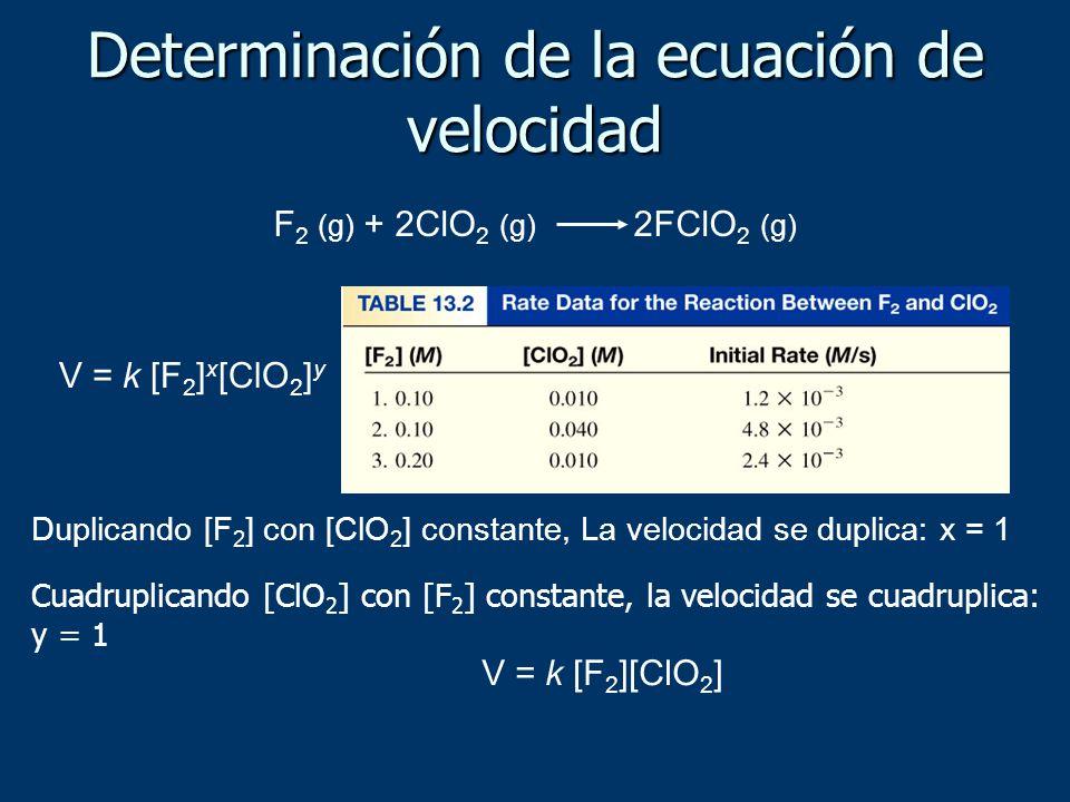 Determinación de la ecuación de velocidad