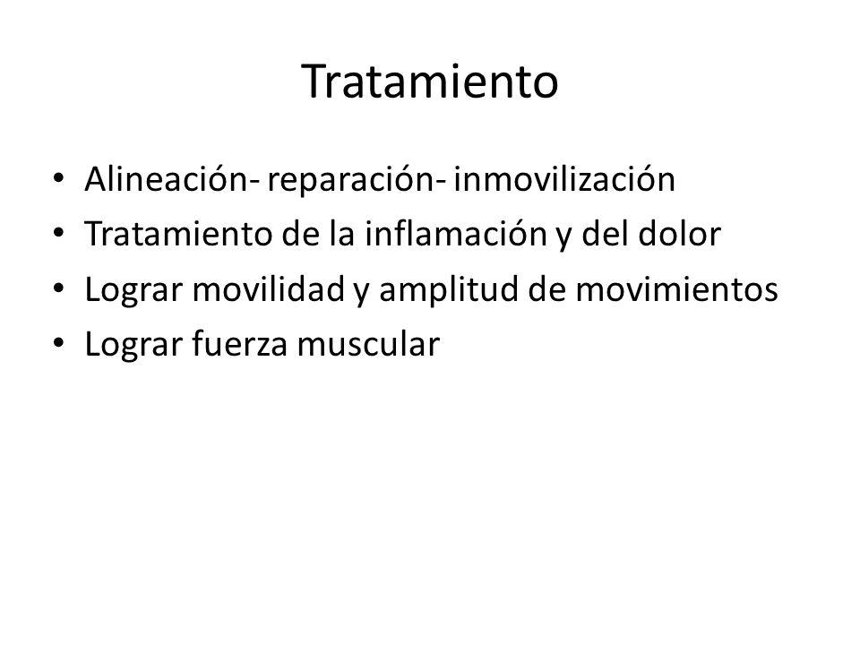 Tratamiento Alineación- reparación- inmovilización