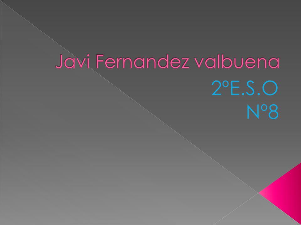 Javi Fernandez valbuena