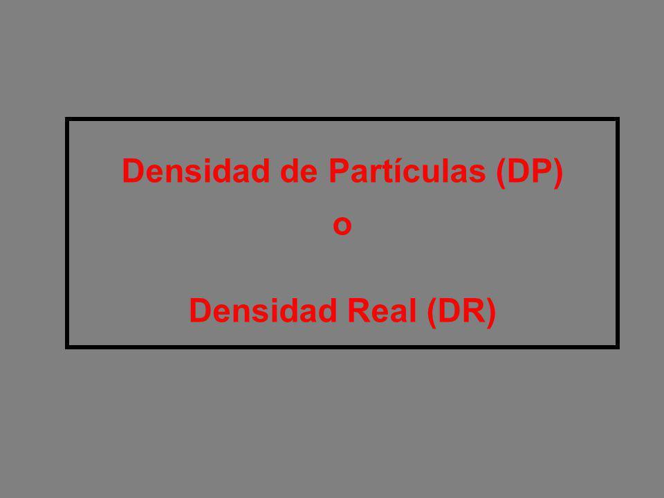 Densidad de Partículas (DP)