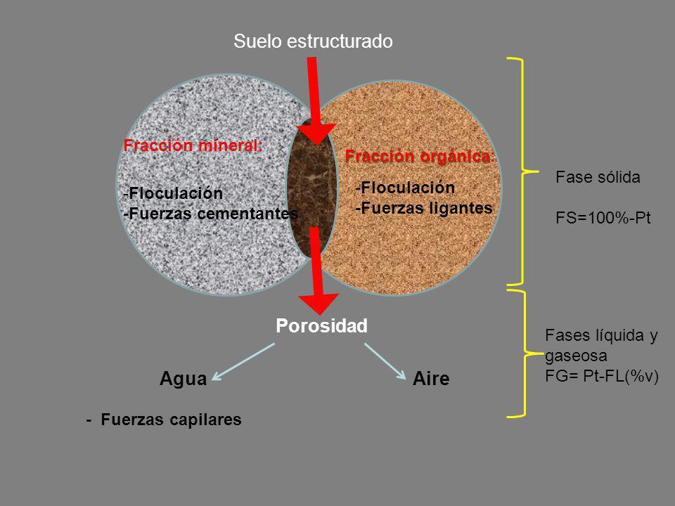 Suelo estructurado Porosidad Agua Aire Fracción mineral: