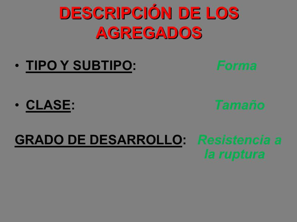 DESCRIPCIÓN DE LOS AGREGADOS