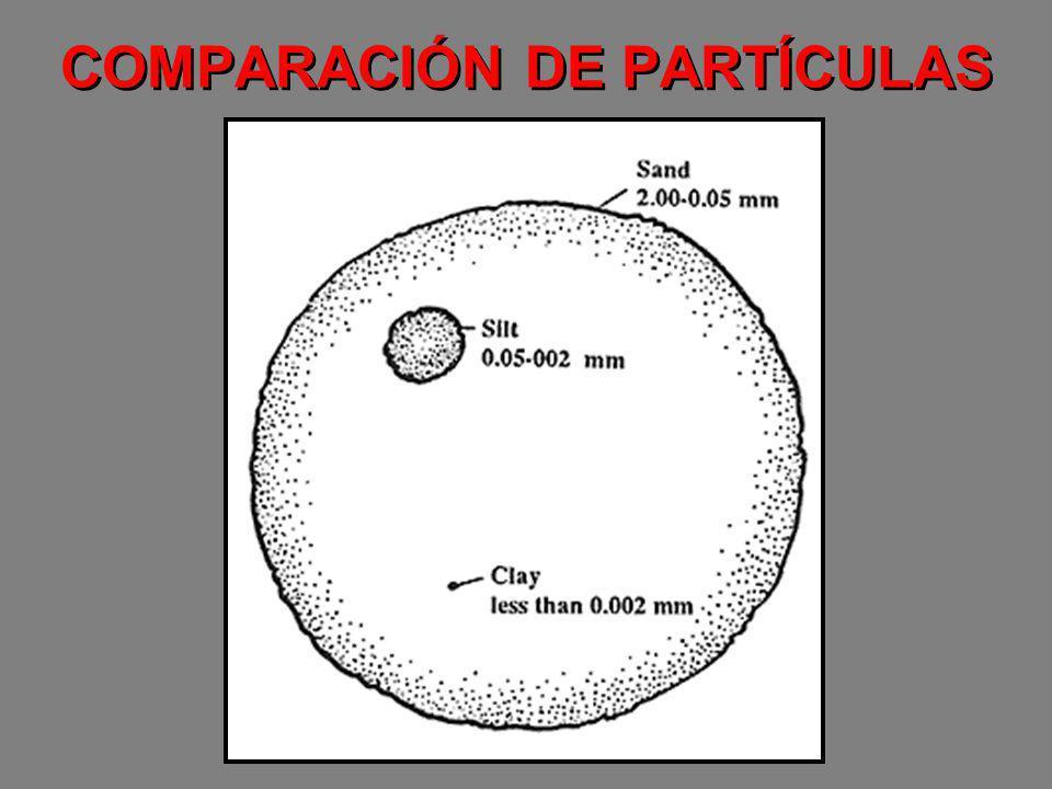 COMPARACIÓN DE PARTÍCULAS