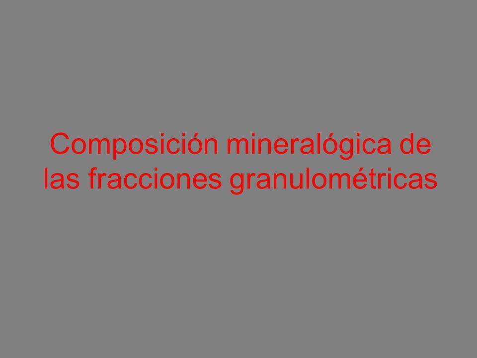 Composición mineralógica de las fracciones granulométricas